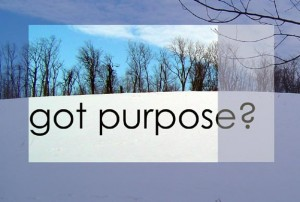snow purpose1 300x202 What good is passion without purpose?
